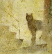 Умбровый кот