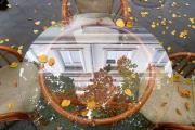 Осень в кафе