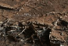 Снимок фрагмента «Города-сада». Изображение: MSSS / JPL-Caltech / NASA