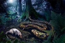 Одна из первых змей в представлении художника. Изображение: Julius Csotonyi