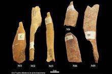 Фото: A Trujilo-Mederos el al / Archaeometry