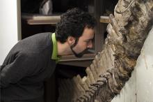 Руководитель исследования рассматривает окаменелости. Фото: Laurent Mekul