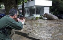 Фото: Reuters с сайта Лента Ru