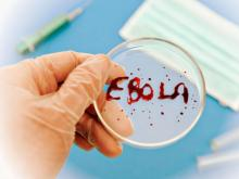 Фото с сайта http://эбола www.poetra.biz.