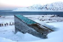 «Хранилище судного дня». Фото: John McConnico / AP