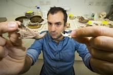 Луйс держит в руках челюстные кости гигантских крыс. Фото: ANU