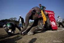 Фото: Xinhua/Pratap Thapa