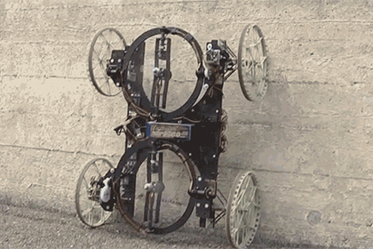 Ученые в Швейцарии создали робота, который ездит по стенам (видео)