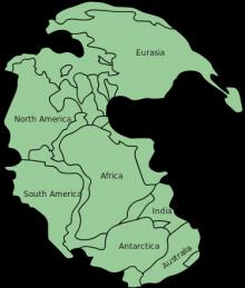 Иллюстрация: wikimedia.org