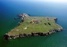 Остров Змеиный. Иллюстрация Wikimedia commons