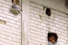 Тюрьма La Modelo в Боготе. Фото: Reuters