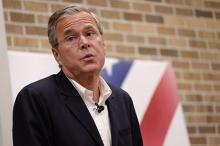Джеб Буш. Фото с сайта Лента Ру