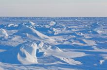 Арктический лед. Фото с сайта fototelegraf.ru