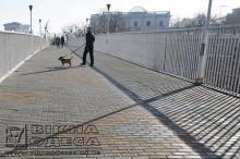 Тещин мост. Фото Вячеслава Тенякова