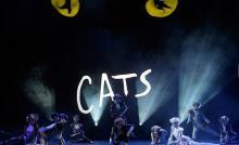 Источник: AP. Мюзикл «Кошки» в Швейцарии, 2005 г.