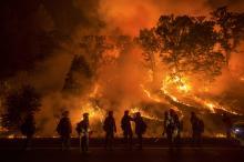 Фото: newsweek.com