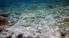 ��������� ����������, ���������� � ����� ��������. ����: Ephorate of Underwater Antiquities