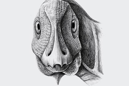 Натерритории Румынии найден динозавр сопухолью челюсти