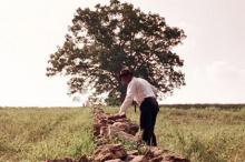 Кадр: фильм «Побег из Шоушенка»
