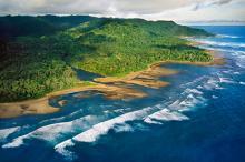 Побережье Коста-Рики. Фото: Frans Lanting / Globallookpress.com