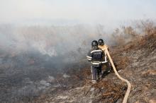 Фото пресс-центра Главного управления ГСЧС в Одесской области (архив)