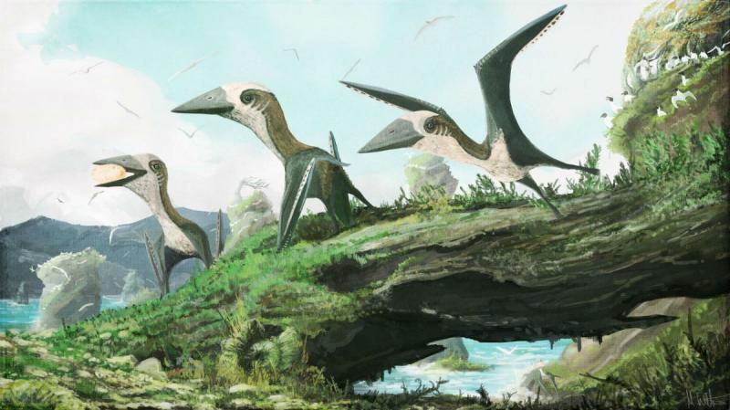 Палеонтологи обнаружили неизвестный вид крылатых «мини-ящеров»