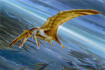 ВАргентине найдены останки птерозавра возрастом 170 млн лет
