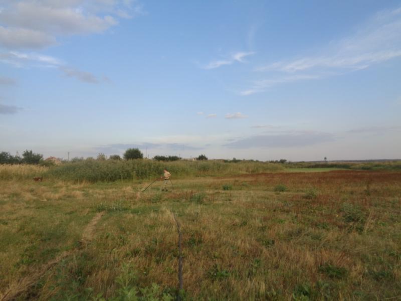 ВОдесской области обнаружили подземный спиртопровод вМолдову