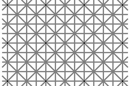Попробуйте увидеть все 12 точек— особенная иллюзия