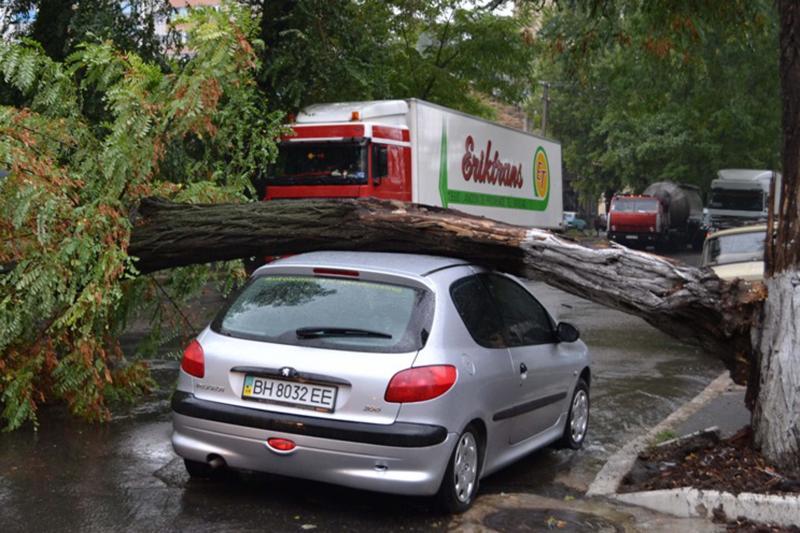 Непогода вОдессе: циклон повалил неменее полусотни деревьев, движение транспорта частично блокировано