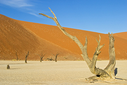 Cкорое повышение температуры Земли на7 градусов признали неизбежным