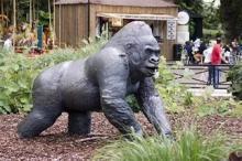 В Лондонском зоопарке