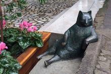 Памятник коту Томбили. Фото: страница Tombili в facebook