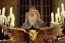 Альбус Дамблдор. Кадр из фильма «Гарри Поттер и Кубок огня»