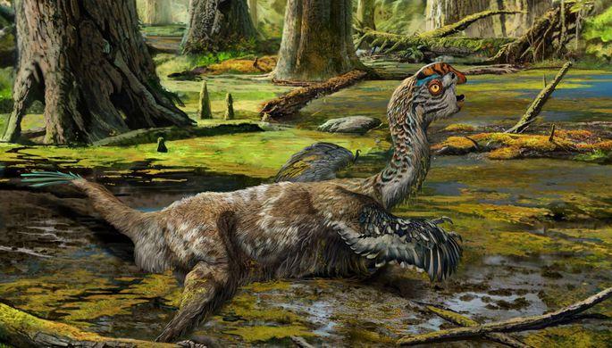 ВКитайской республике палеонтологи обнаружили останки пернатого динозавра