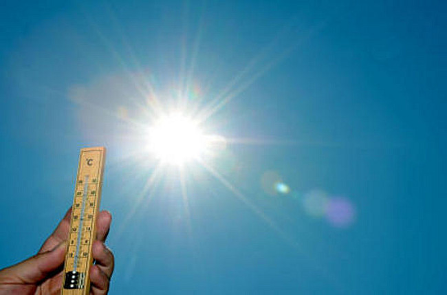 Уходящий год может стать самым жарким завсю историю из-за глобального потепления
