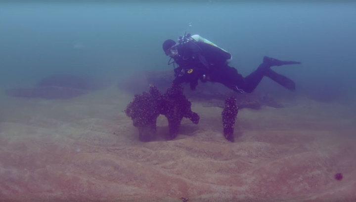 Вглобальной паутине размещено видео таинственного затонувшего поселения