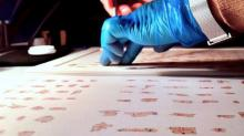 Работа с фрагментами Кумранских рукописей. Фото: Israel Antiquities Authority