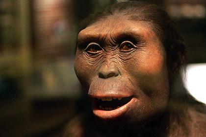 Раскрыты новые детали жизни самого популярного предка человека