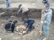 Археологи во время раскопок на поселении Вышестеблиевская-16. Фото пресс-службы ИММК РАН