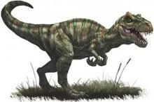 Предполагаемый вид аллозавра. Иллюстрация с сайта pathfinderwiki.com