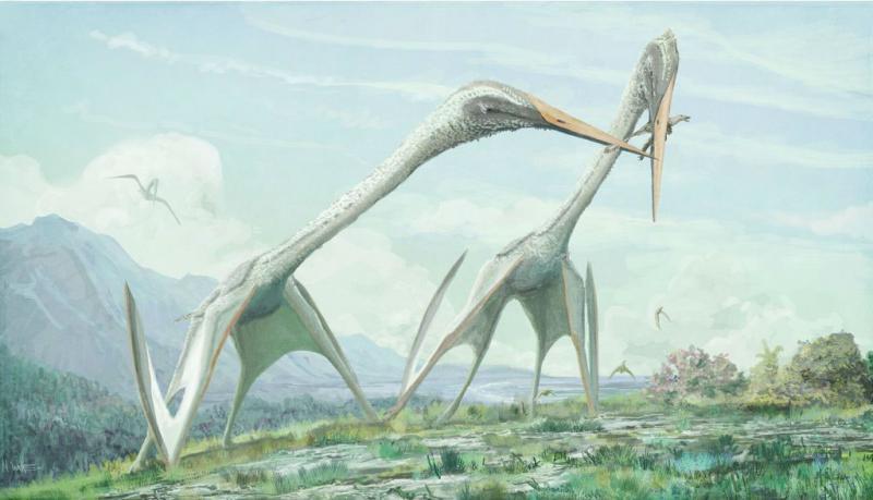 ВРумынии найден птерозавр, истреблявший карликовых динозавров