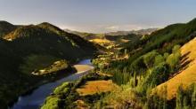 Вангануи. Фото с сайта ezicarrental.co.nz