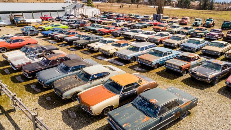 Житель Канады реализует земельный участок вместе с340 автомобилями