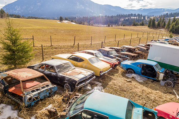 Гражданин Канады выставил на реализацию автомобильное кладбище за1 мил дол