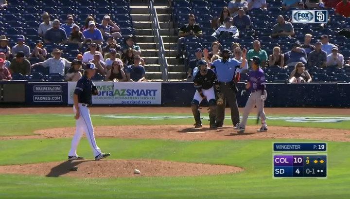 Рой пчел атаковал бейсболистов впроцессе матча