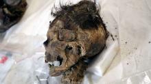 Голова алтайской мумии со следами травмы