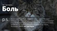 Фото проекта we-feel.ru