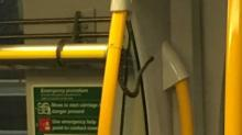 Фото: NSW TrainLink