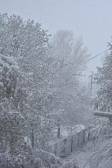 Апрельский снег в Подольске. Фото регионального общественного телевидения «Скиф»